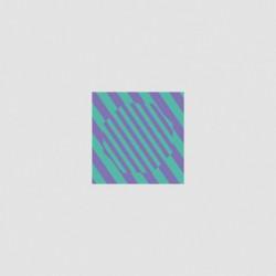 CARIBOU NEVER COME BACK (FOUR TET / MORGAN GEIST REMIXES) 12 '' LP