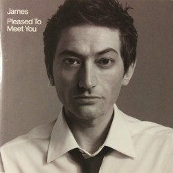 JAMES PLEASED TO MEET YOU 2 LP