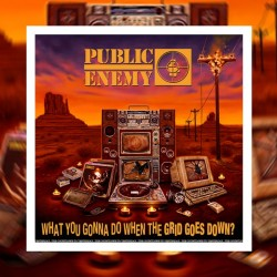 PUBLIC ENEMY 2020 WHAT YOU GONNA DO WHEN THE GRID GOES DOWN? LP