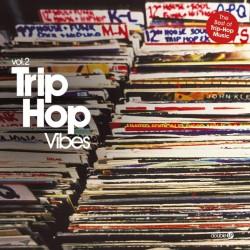 TRIP HOP VIBES VOL 2 2 LP