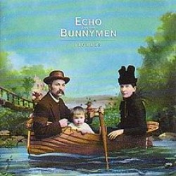 echo and the bunnymen flowers